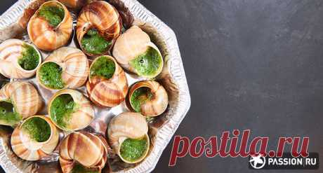 French cuisine: recipes and traditions   passion.ru