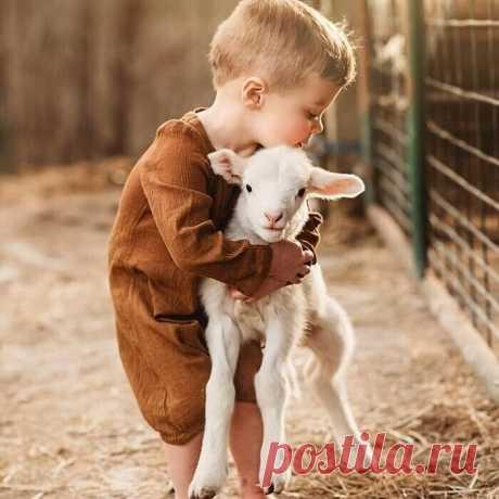 Ясчитаю, что действительно настоящая религия— это Доброе Сердце.  Далай - лама.