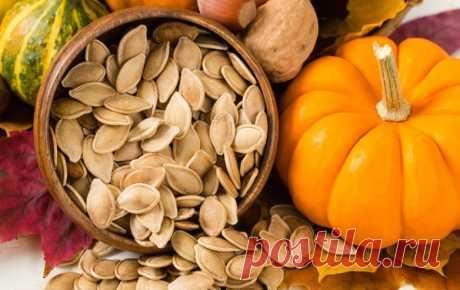 Польза семян тыквы для организма - Все обо Всем