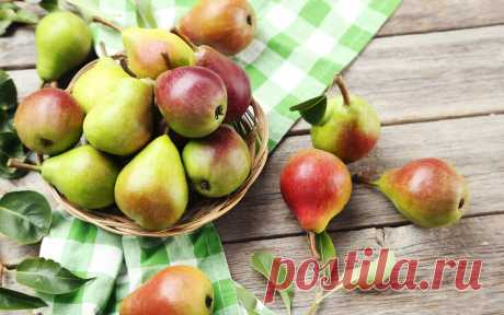 What to prepare from pears for the winter – 20 recipes of tasty and useful preparations | Country kitchen (Огород.ru)