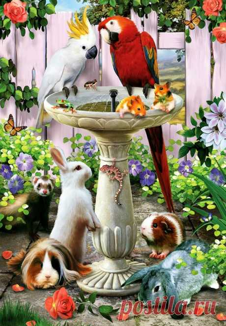 Яркий и удивительный животный мир. Художник Howard Robinson