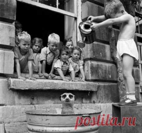 20 исторических снимков, которые мало кому попадались на глаза