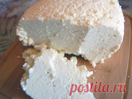 Рецепт сыров Кесо Бланко и Панир | Рецепты сыра | Сырный Дом: все для домашнего сыроделия