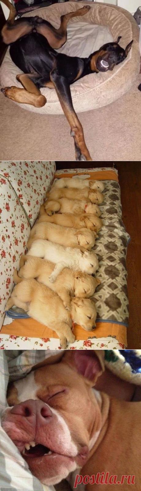 Все, устал!