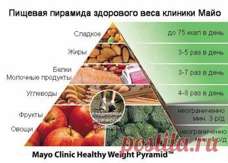 Диета клиники Майо – официальная версия | Культура Здоровья