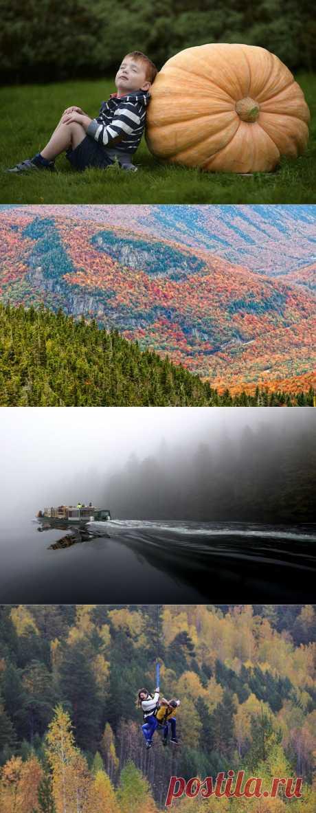 В воздухе витает осень : НОВОСТИ В ФОТОГРАФИЯХ
