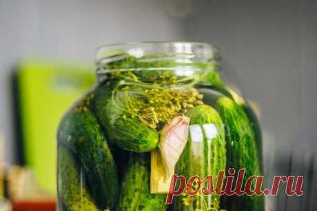 Огурцы малосольные в банке - рецепт хрустящих огурцов быстрого приготовления Малосольные огурчики, зеленые, сочные и хрустящие. Отличное дополнение, к жареной или отварной картошечке. Часто используются в приготовлении салатов. Без них