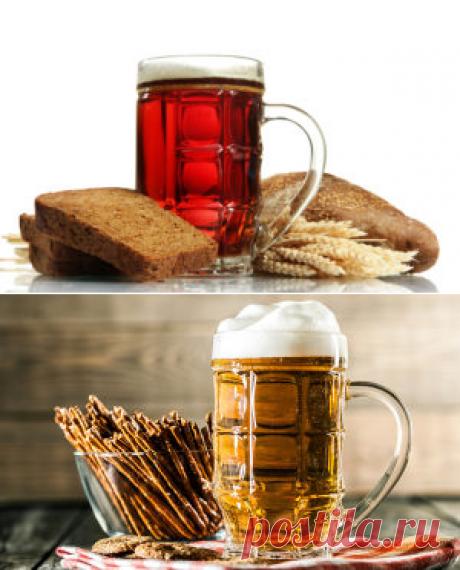 Хлебное пиво в домашних условиях: рецепты приготовления
