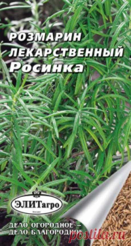 """Семена. Розмарин лекарственный """"Росинка"""" (вес: 0,01 г) Всхожесть: 86%. Рекомендуется для использования в свежем и сушеном виде (листья и молодые побеги) в качестве приправы к блюдам, а также при консервировании и засолке. На юге - многолетнее растение. В северных районах возделывают семенами и вегетативно (черенками) на защищенных от ветра..."""