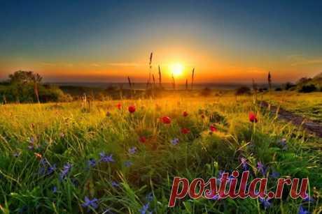 РАССВЕТ  Что может быть прекрасней?! Когда зарождается новый день, и под первыми лучами Солнца, показавшего из-за линии горизонта, просыпается ото сна все живое на планете.  Разве это не чудо?! Мы сделали для вас потрясающе красивую фотоподборку. Давайте насладимся этими прекрасными мгновениями вместе. А если вы любите встречать рассветы и у вас есть фото, то непременно поделитесь им с нами.