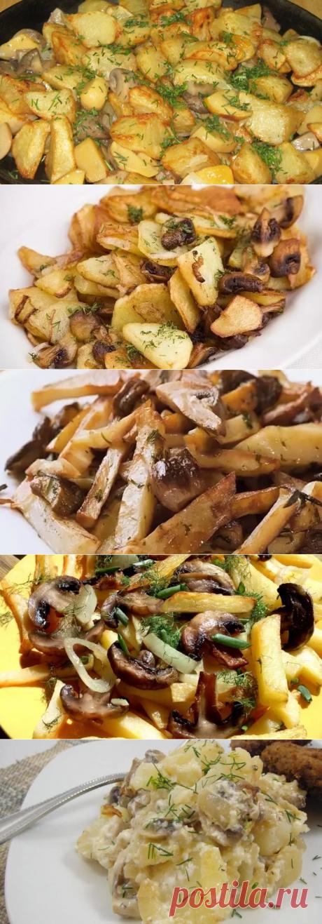 Жареная картошка с грибами — рецепты приготовления на сковороде