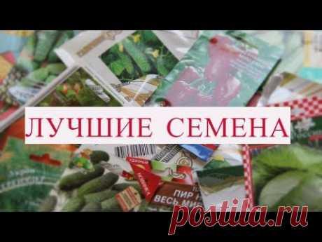 ЛУЧШИЕ СЕМЕНА, ЧТО Я КОГДА-ЛИБО ПОКУПАЛА! 100% ВСХОЖЕСТЬ! ШИКАРНЫЙ УРОЖАЙ! Купить семена со скидкой по моему промокоду: SEEDS350350LQDRR https://seedspost.ru/?utm_source=youtube&utm_medium=vo-sadu-ogorode&utm_campaign=black-friday П...