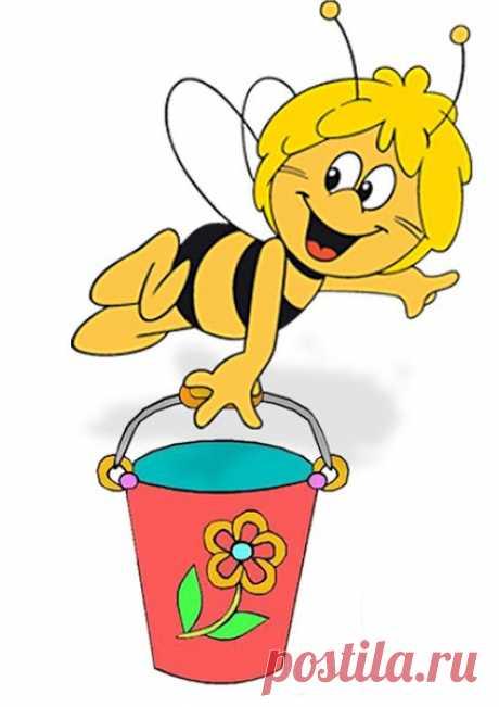 КАК выбирать мед?
