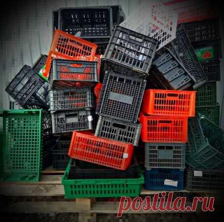 Достаю бесплатно пластиковые ящики для своего сада. Всем соседям на зависть. Делюсь хитростями использования ящиков на участке. | Дневник Садовода | Яндекс Дзен