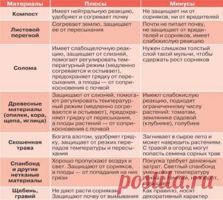 La tabla de las propiedades mulchi para cada planta | el Jardín y la huerta | Yandeks Dzen