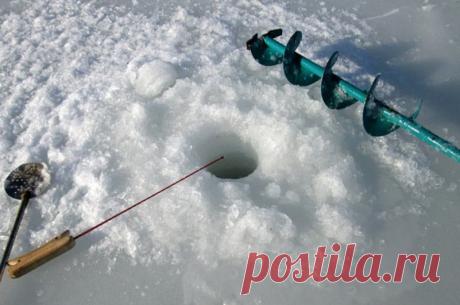 Шикарная добавка в прикормку для зимней рыбалке.Рыба просто атакует лунку