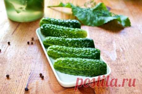 Малосольные огурцы в холодном рассоле - пошаговый рецепт с фото на Повар.ру