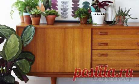 30 причин полюбить мебель в стиле ретро Мебель в стиле ретро — это всё самое яркое и заметное, что было создано дизайнерами в 50-70-х годах прошлого столетия. Такая мебель полна положительных сторон: она функциональна, компактна и легко впи...