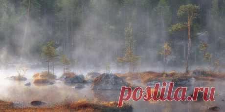 Кольский полуостров, Мурманская область. Автор фото — Любовь Трифонова: nat-geo.ru/photo/user/13127/