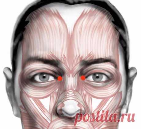 La técnica para el levantamiento del cansancio de los ojo Todos los ejercicios hagan con los ojos cerrados, gracias a esto el proceso del levantamiento de la tensión muscular será más intenso y eficaz