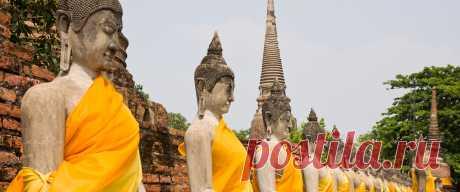 Дзен-буддизм: основные идеи кратко. Ценность дзен-буддизма в том, что он максимально практичен. В нём нет никаких странных философских концепций, догм, ритуалов и так далее. Дзен-буддизм основан на простых жизненных истинах, которые каждого могут сделать счастливым и привести к эволюции.