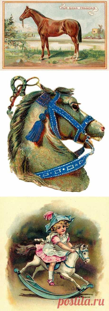 Винтажные картинки для декупажа. Лошади, олени и другое.