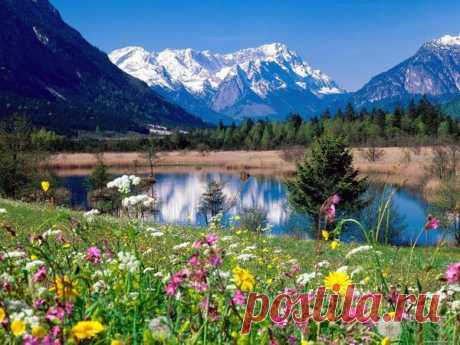Я люблю этот мир за его красоту - Стихи - Для души - Статьи - Школа радости
