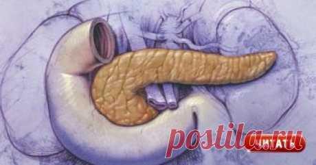 8 рецептов народной медицины для оздоровления поджелудочной железы Любое нарушение работы внутренних органов негативно отражаетсяна состоянии нашегоздоровья.Если проявляются проблемыс пищеварением, повышается уровень сахара в крови, то такие симптомы указываютна сбои в работе поджелудочной железы. Проявляйте заботу о себе, правильно питайтесь и БУДЕТЕ ЗДОРОВЫ! Этот небольшого размера орган, расположенный слева под желудком, выполняет сразу две жизненно важные функци...