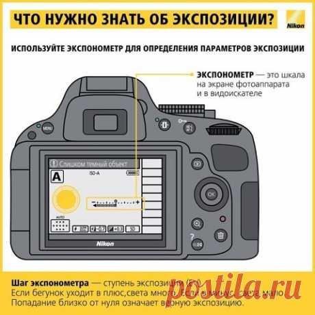 10 шпаргалок, которые помогут делать шикарные фотографии («Other»)