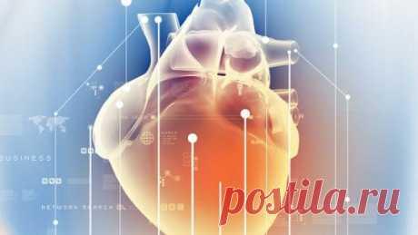 7 главных признаков того, что вам следует обратиться к кардиологу   Медицина и флебология   Яндекс Дзен