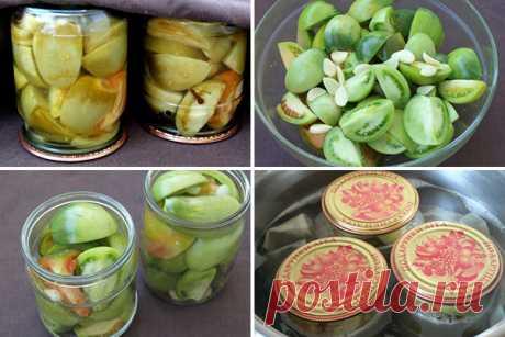 Маринованные зелёные помидоры — СОВЕТНИК