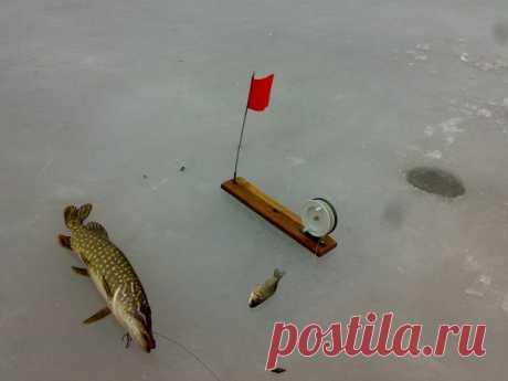Жерлица на Щуку. | Охота и Рыбалка | Яндекс Дзен