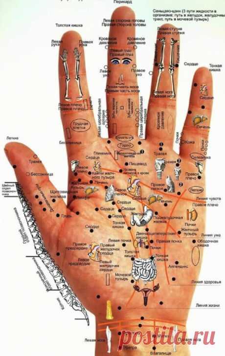 Определите проблемы со здоровьем по своим рукам – быстро и точно.