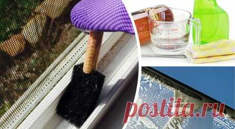 Как быстро вымыть окна   Наши дома