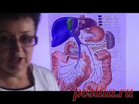 Восстановление печени и поджелудочной железы