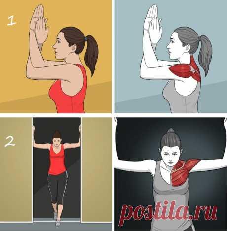 4 статических упражнения для спины и плеч, заменяющие сеанс массажа | Liberdini | Яндекс Дзен