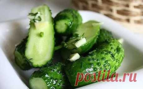Малосольные огурцы с зеленью и чесноком быстрого приготовления: рецепты хрустящих огурцов
