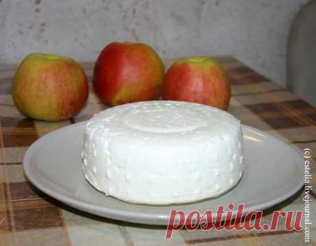 Готовим сычужный осетинский сыр в домашних условиях - Дорога - мой дом