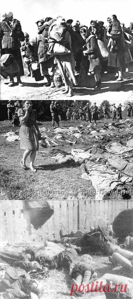 Немецкие фашисты несли благо нашей стране в Великую Отечественную войну? | Дни Великого Подвига