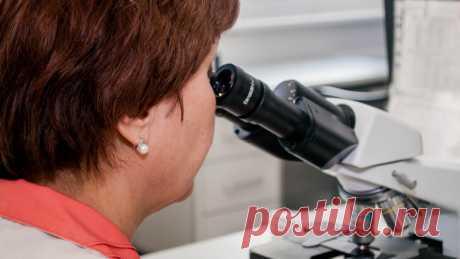 Американские ученые установили способствующий долголетию доступный продукт По мнению специалистов, снижению кровяного давления и улучшению состояния сердечной мышцы способствует гречневая крупа.