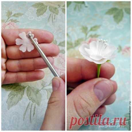Esculpimos vetochku las sakuras de la arcilla polimérica - la Feria de los Maestros - la labor a mano, handmade