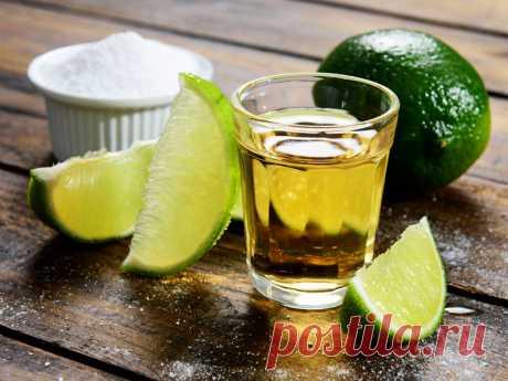 15 фактов, подтверждающих, что текила — чертовски полезный напиток!
