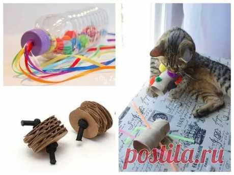 Игрушки для кошек своими руками: 8 идей для усатых и полосатых - Сам себе мастер - медиаплатформа МирТесен