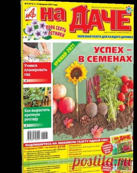 Читать журнал АИФ. НА ДАЧЕ № 03-2021 бесплатно - полная версия