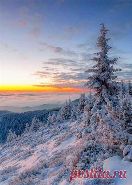 (18) ГУГЛЯТА+ Люблю тебя, Февраль, за то, что ты последний у Зимы...