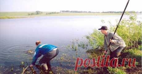 Незадачливый рыбак (случай на рыбалке) | Блоги о даче, рецептах, рыбалке