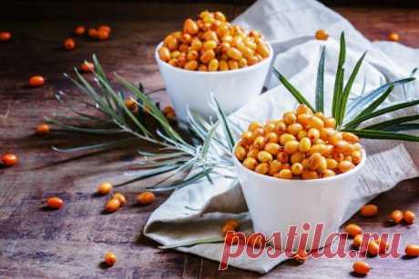 Оранжевое чудо - облепиха: полезны не только ягоды, но и листья!  Эту замечательную во всех отношениях культуру выращивают многие дачники. Но всегда ли они с толком используют урожай? Ведь у облепихи полезны не только позитивные оранжевые ягоды, но и листья.  Облеп…