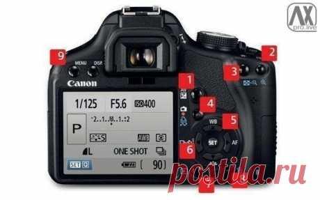 24 функции фотокамеры, о которых должен знать каждый фотограф / Взлом логики