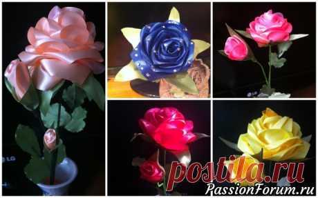 О, как же розы восхищают! - запись пользователя Наталья (Наталья) в сообществе Конкурсы в категории Вальс цветов 2019