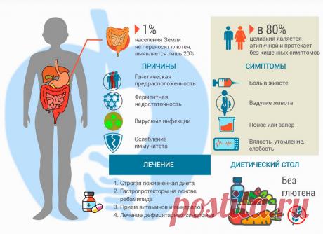 Непереносимость глютена | Здоровье на 101% | Яндекс Дзен